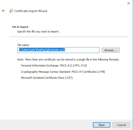 Windows Certificate Import Wizard File Choice