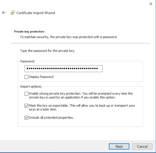 Windows Certificate Import Password Entry